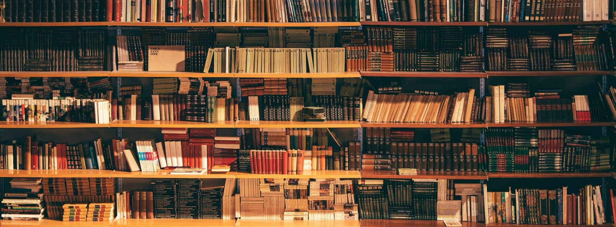 Wie schreibe ich ein Buch? Die 10 wichtigsten Tipps