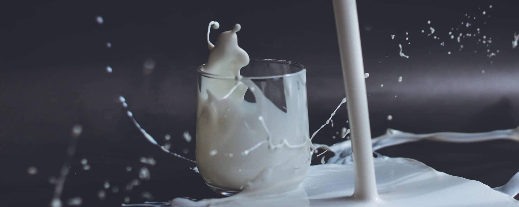 Säure-Basen-Haushalt: Sind Milchprodukte basisch?